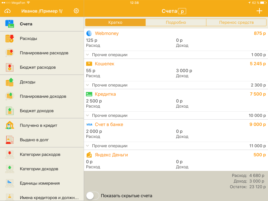 Домашняя бухгалтерия для iPad